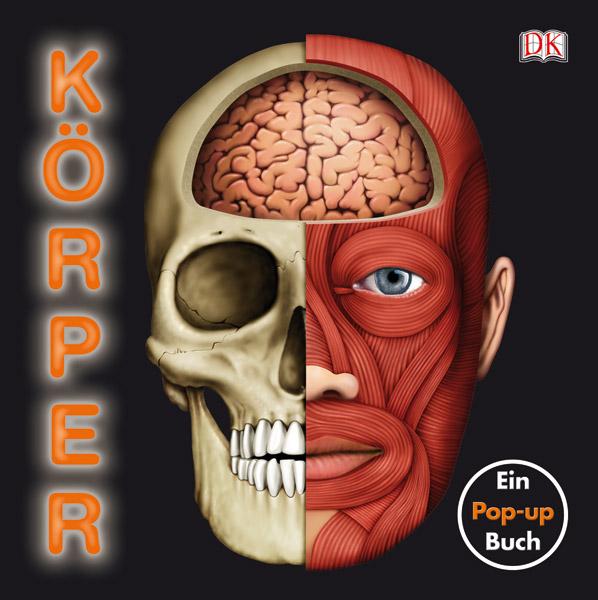 Koerper Pop up - gross