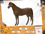 Pferdereihe2