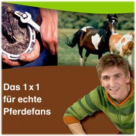 LZ Pferde - Start