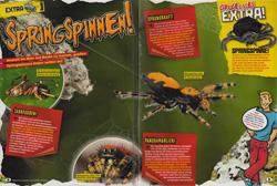 LZ07-15 - Springspinnen