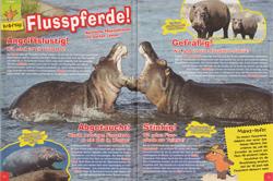 Maus05-15 - Flusspferde