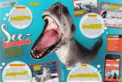 LZ01-17 Seeleoparden