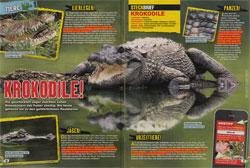 LZ0317-Krokodile