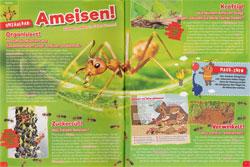 Maus0317-Ameisen