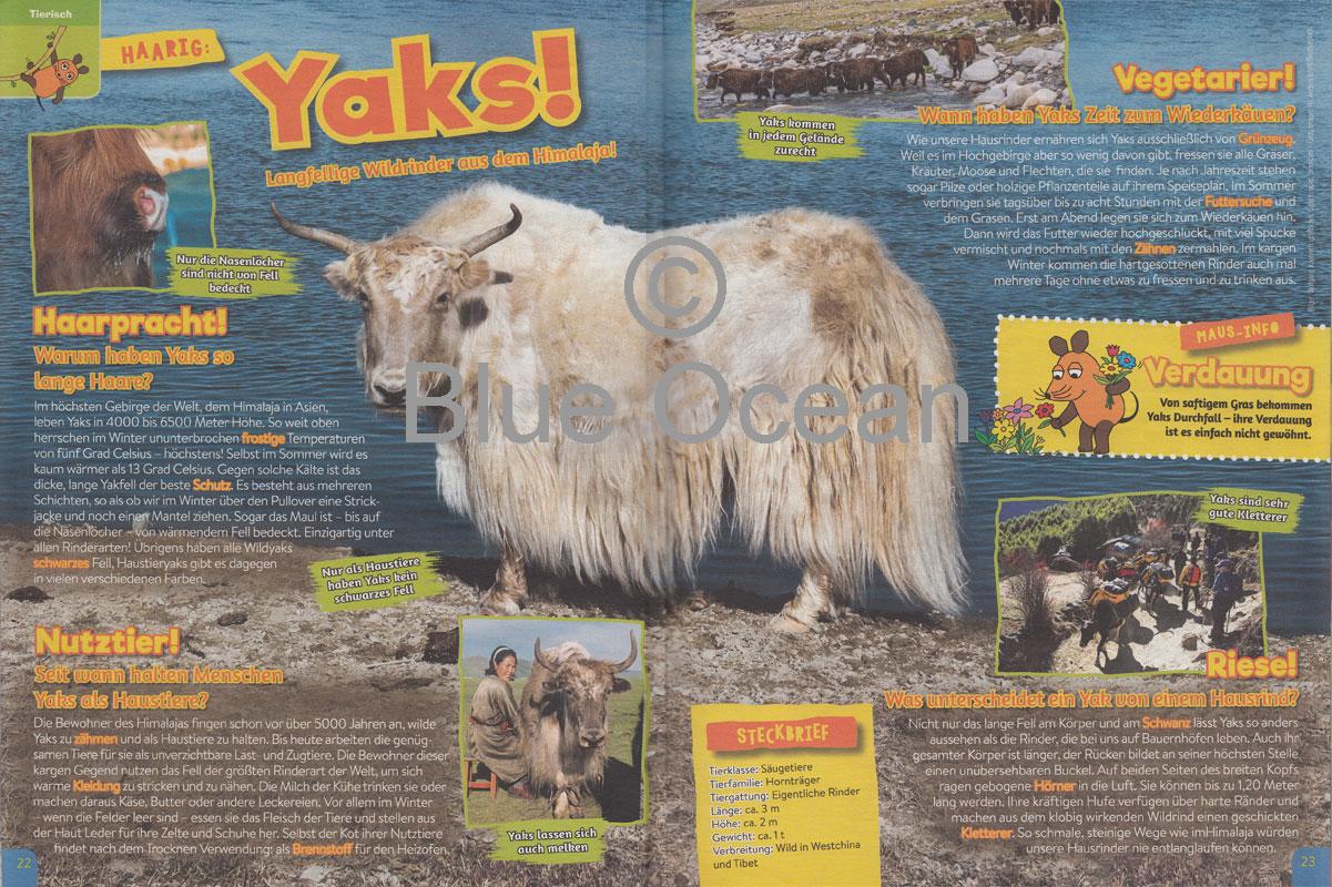 Maus01_18-Yaks - gross
