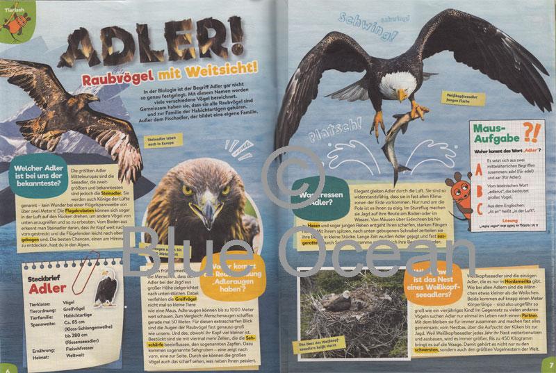Maus06_18-Adler - gross