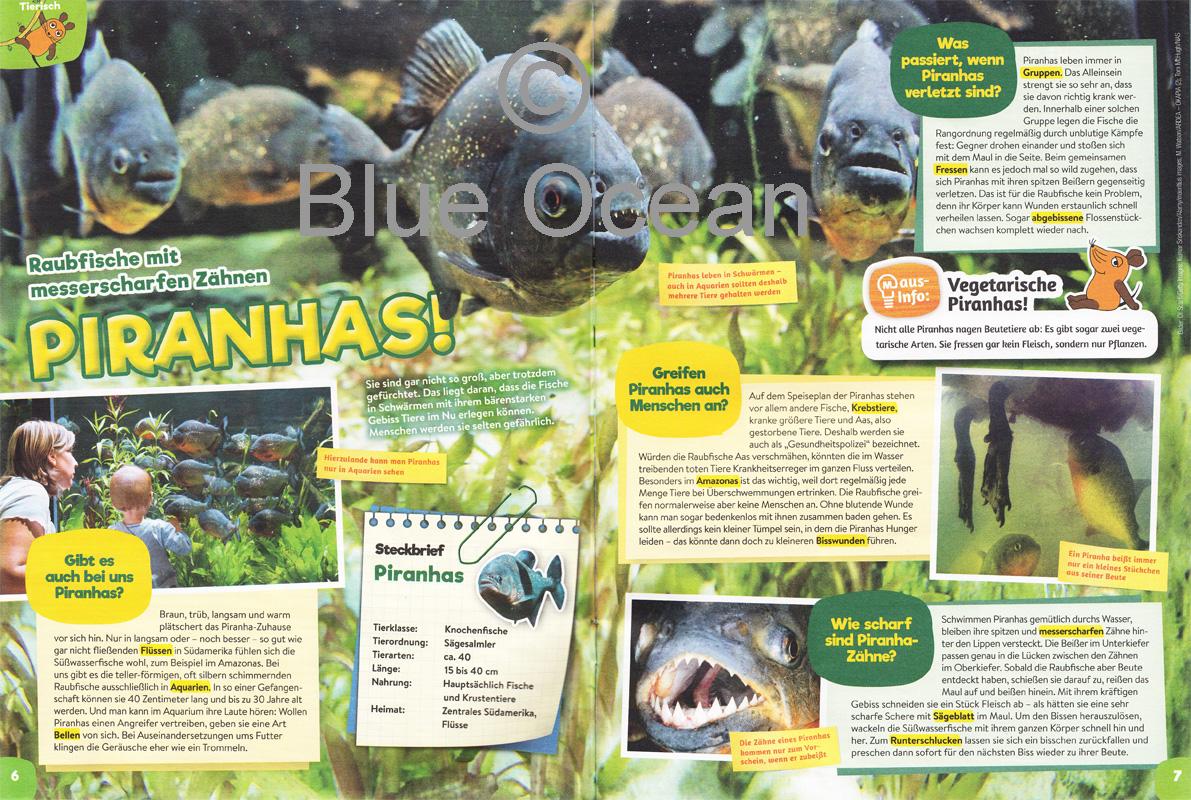 Maus02_19_Piranhas - gross