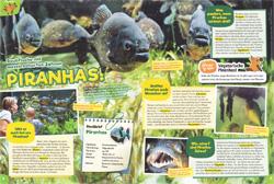 Maus02_19_Piranhas