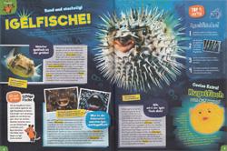 Maus05-19 - Igelfische